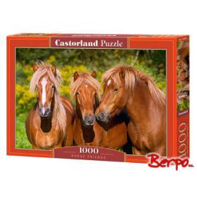 CASTOR Puzzle 1000 el. Konie 103959