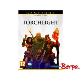 PC TORCHLIGHT 745042