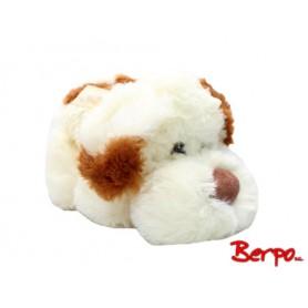 BEPPE 13352 Pies Arnie