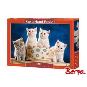 CASTOR Puzzle 500 el. Kotki 052608