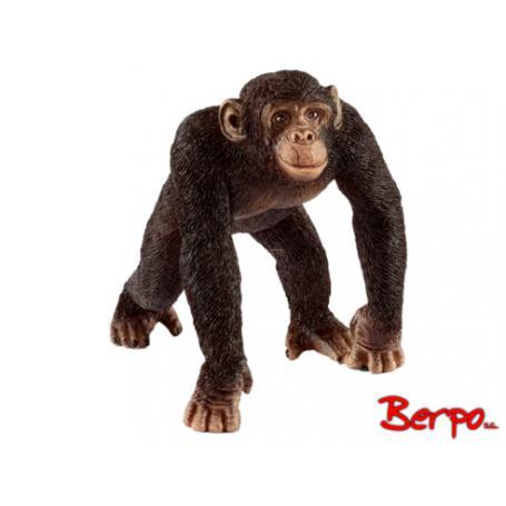 Schleich 14817 Szympans Samiec